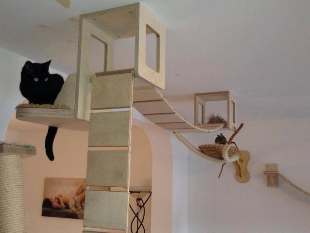 Con Goldtatze la casa si trasforma in un parco giochi per gatti