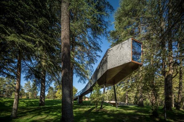 Tree Snake House: una casa cannocchiale nel bosco