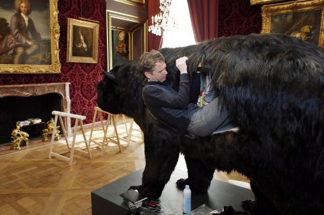 Vivere nella pancia dell'orso: ecco l'ultima performance di Abraham Poincheval