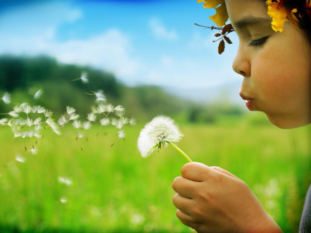 Prevedere l'allergia? Si può con un click