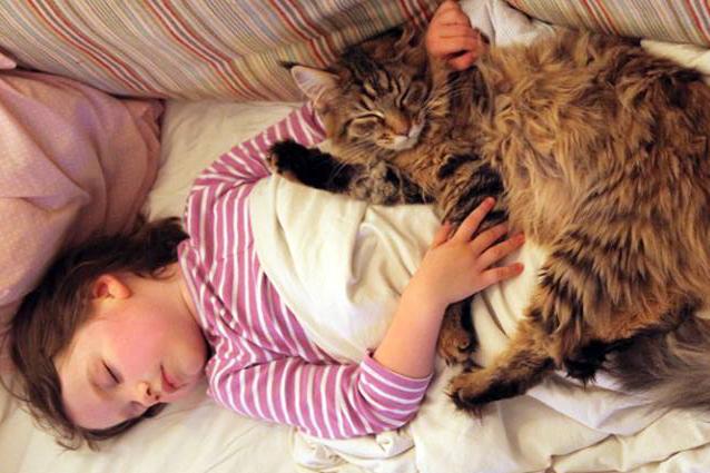 Iris e il gattino Thula, uniti nella lotta contro l'autismo (FOTO)