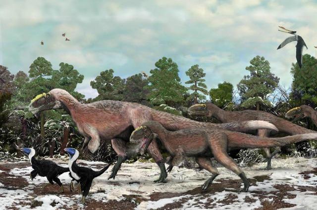 Il Bellissimo Tiranno, scoperto il più grande dinosauro piumato