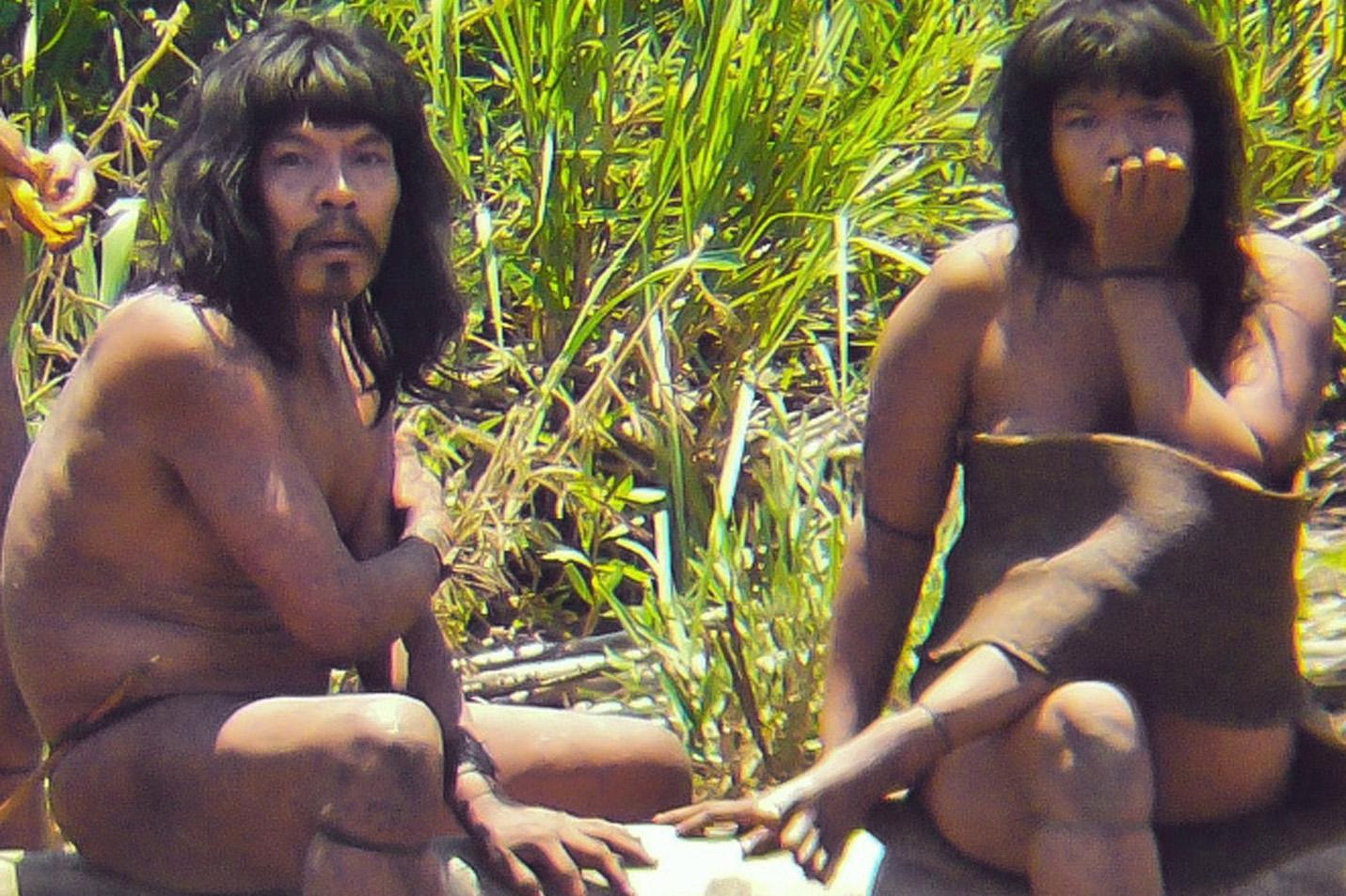 Amazzonia, quelle tribù incontattate minacciate dall'autostrada