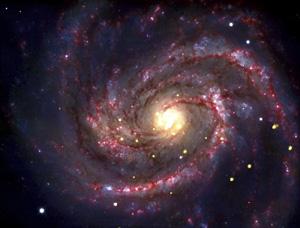 La stella divorata che rivela il buco nero (video)