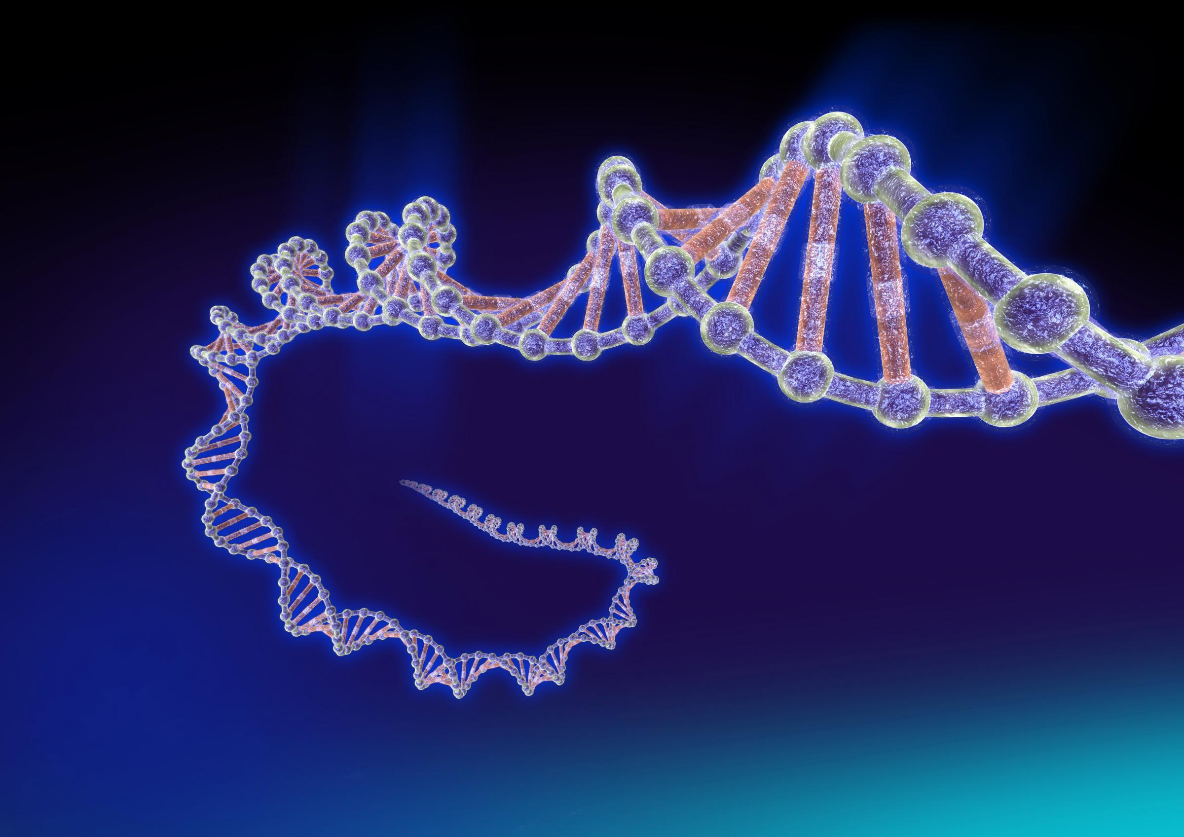 Scoperto un DNA quadruplo nelle cellule tumorali