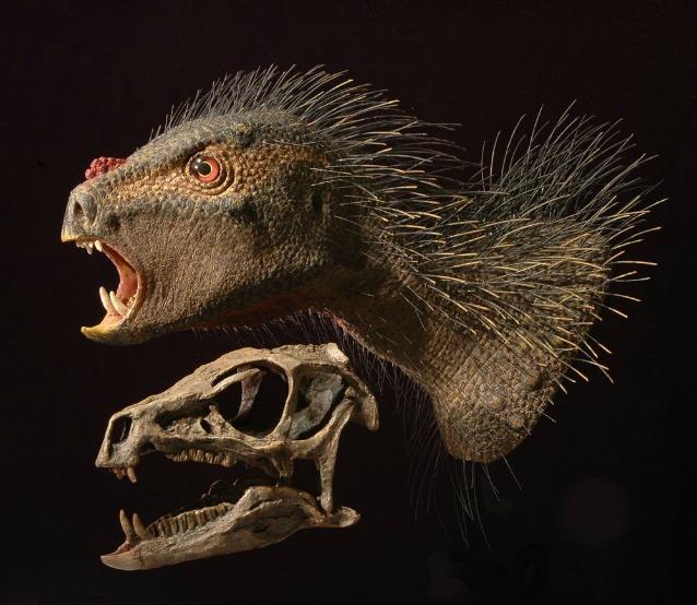 """E' piccolo e somiglia ad un vampiro: scoperto un """"nuovo"""" dinosauro"""