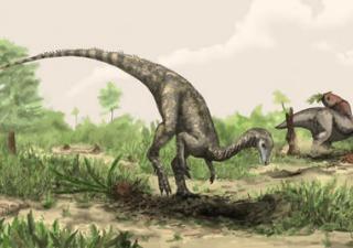 Il più antico tra tutti i dinosauri visse in Tanzania
