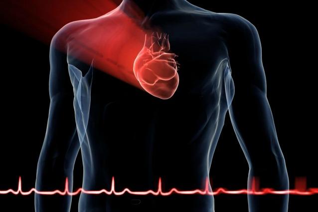 Creata nuova molecola contro l'insufficienza cardiaca
