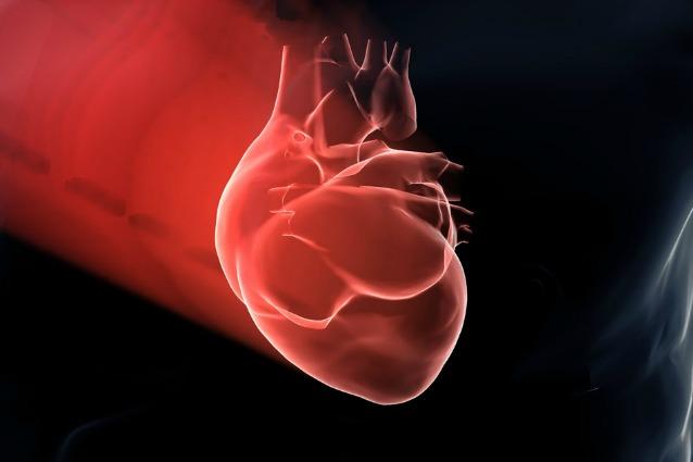 Un cuore artificiale a misura di bimbo