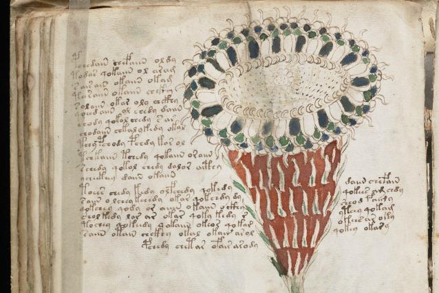 """Manoscritto di Voynich, le nuove indagini sul volume """"indecifrabile"""""""