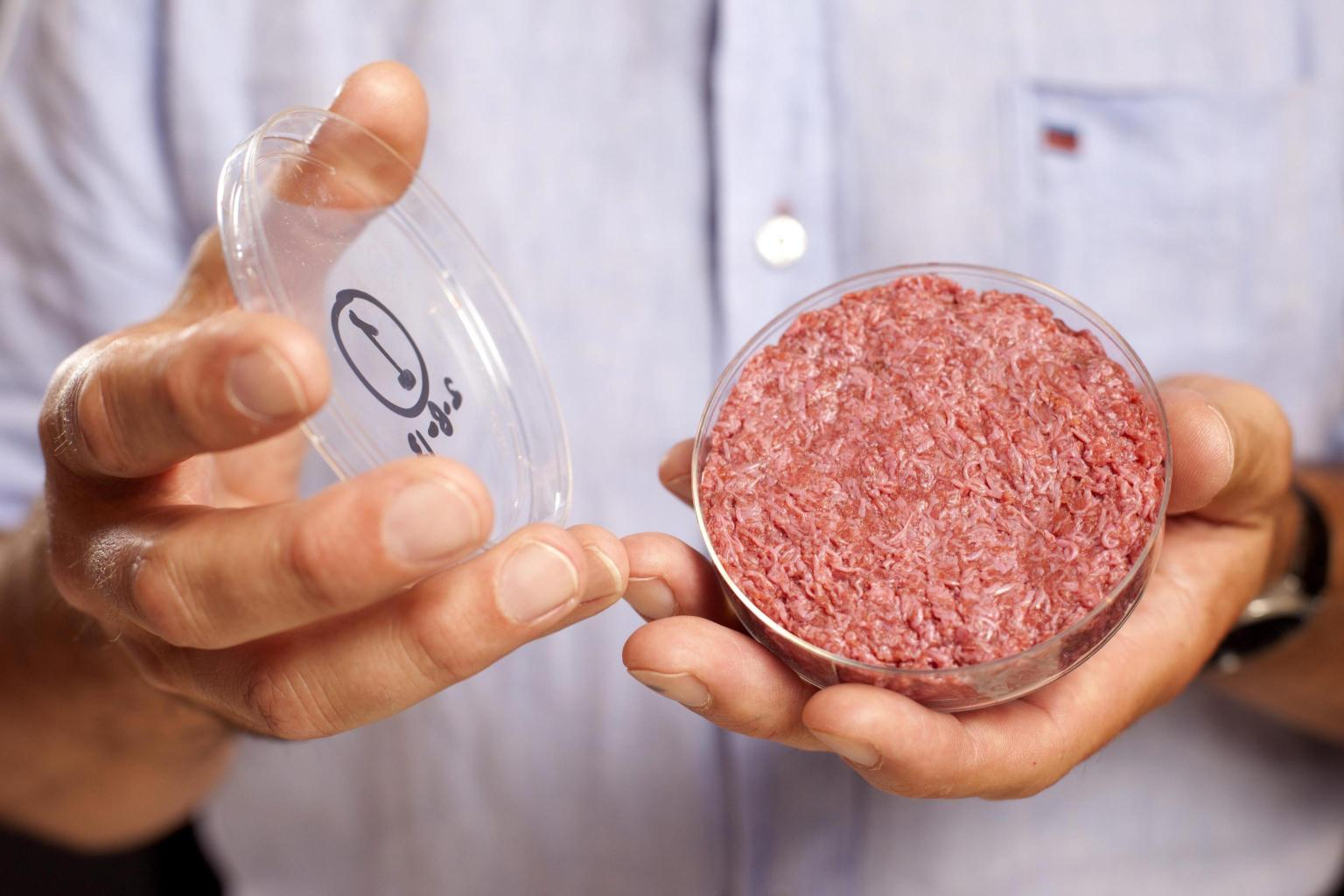 È buono il primo hamburger di carne artificiale? (VIDEO)
