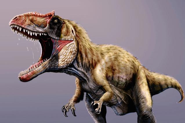 Scoperto il dinosauro superpredatore