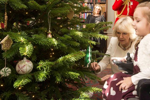 Allergici al Natale: l'albero può causare starnuti e asma