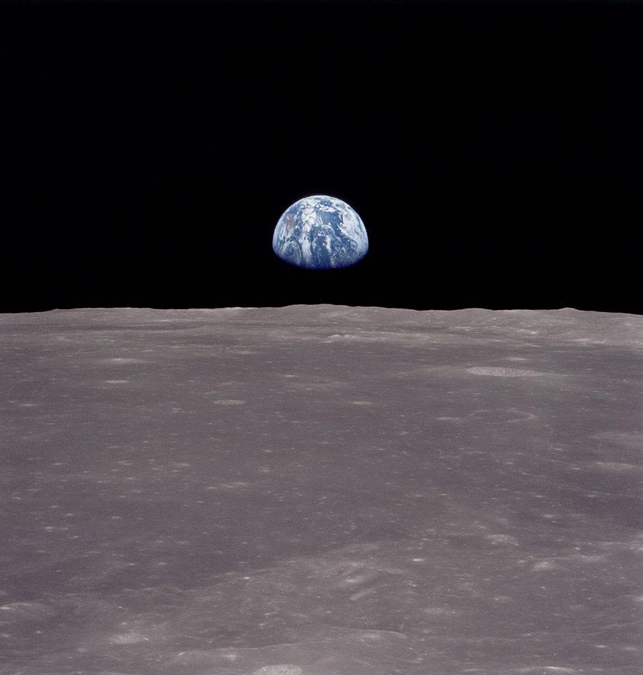 Un orto sulla Luna: una rapa sulla rampa di lancio