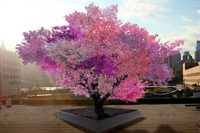 L'albero che produce 40 frutti diversi