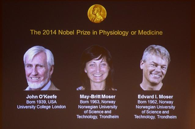 Il Nobel per la Medicina 2014 agli scopritori del nostro GPS interno