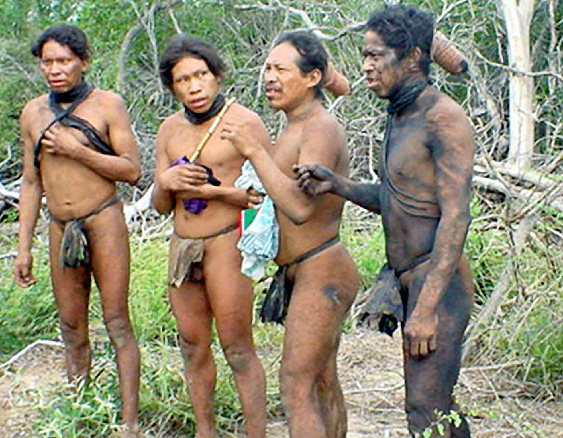 Gran Chaco, la deforestazione minaccia un ecosistema e la sua popolazione