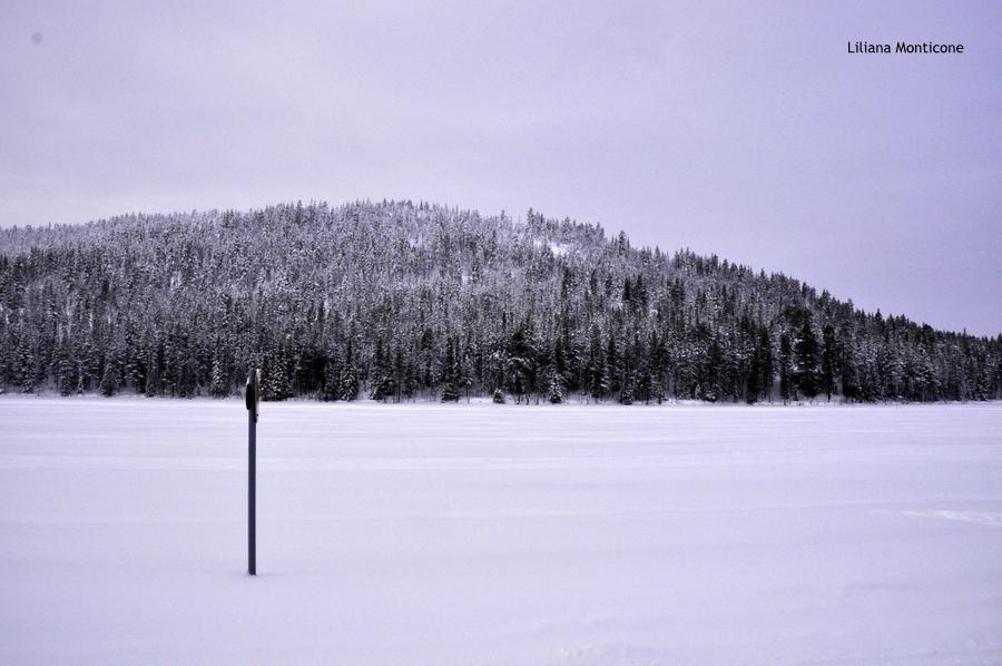 Motoslitta in Finlandia