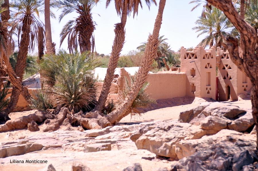 marocco deserto del sahara oasi sacra