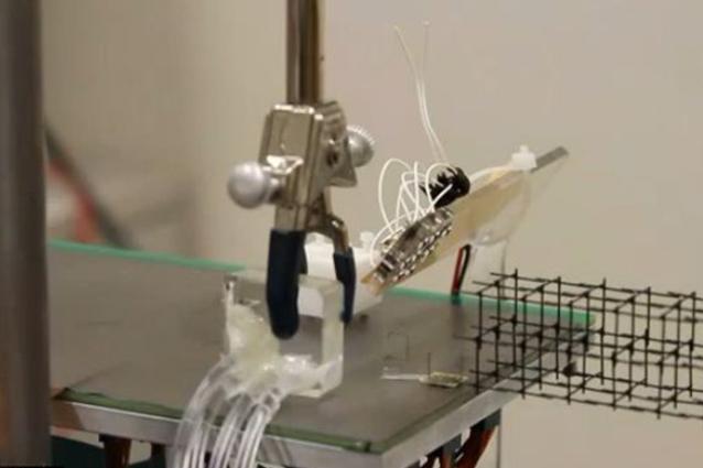 Ecco le formiche-robot in grado di costruire velocemente su tutte le superfici [VIDEO]