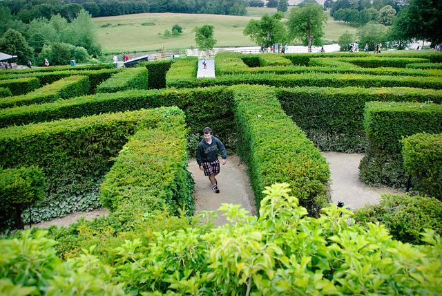 Perdersi nella bellezza dei labirinti botanici for Giardino labirinto