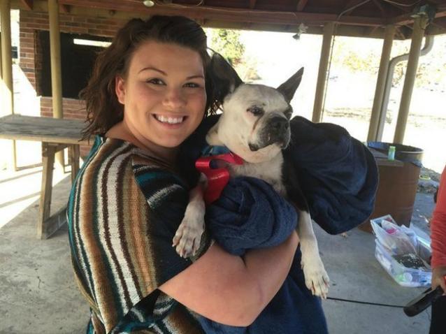 Organizzano una festa d'addio per rendere gli ultimi giorni del loro cane indimenticabili