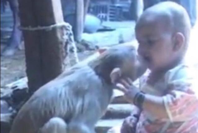 Una bimba e la sua scimmia: ecco le immagini di una insolita amicizia