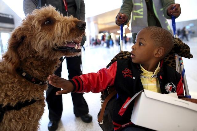 Non solo i cani aiutano i bambini affetti da autismo
