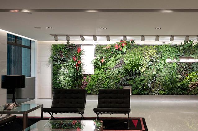 Le piante in ufficio aumentano la produttività del 15%